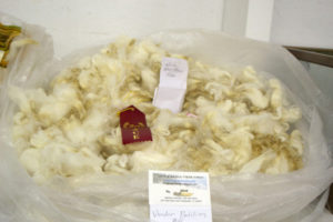 buy, process and spin fleece class at Vermont Sheep & Wool Festival